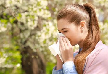 ¿Tienes alergia al polen? Te decimos las zonas donde más polen hay por temporada